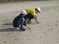 校庭の雑草抜きをしている子供たち