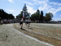 6年生徒競走